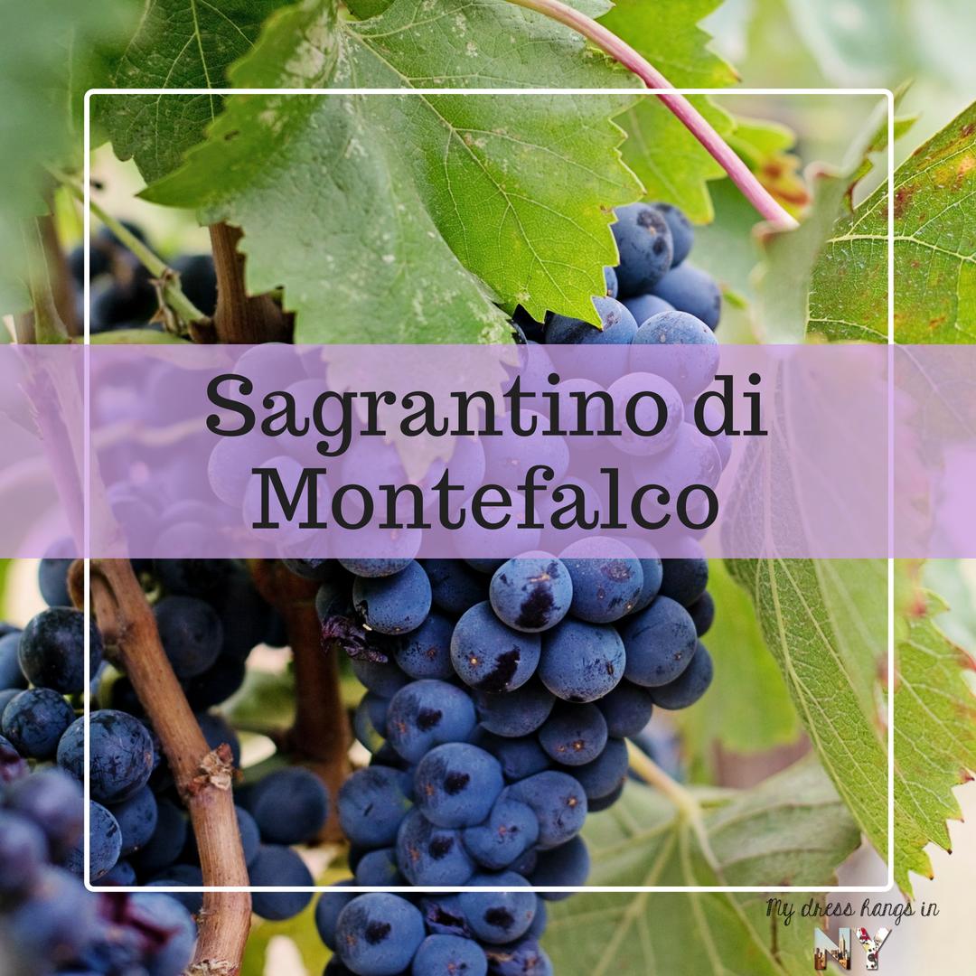 wine diva 6 (3)