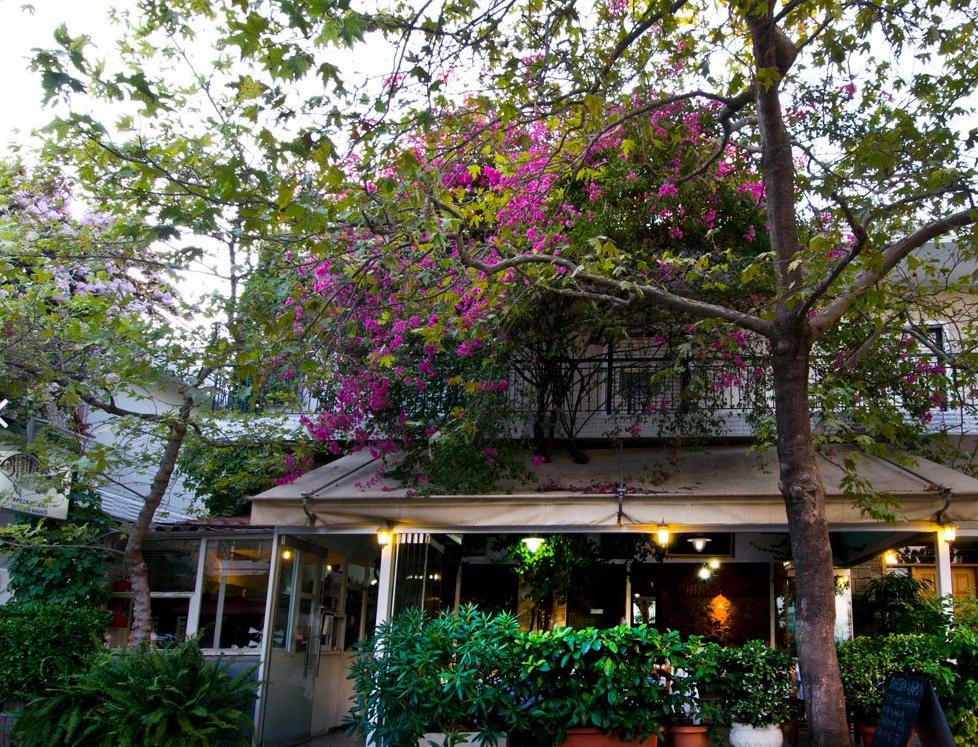 Thanasis Fish Tavern.PNG