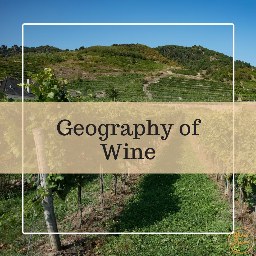 winedivaa_Geography of Wine