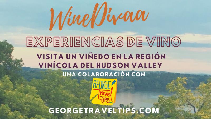 Experiencias del vino de WineDivaa con George Travel Tips